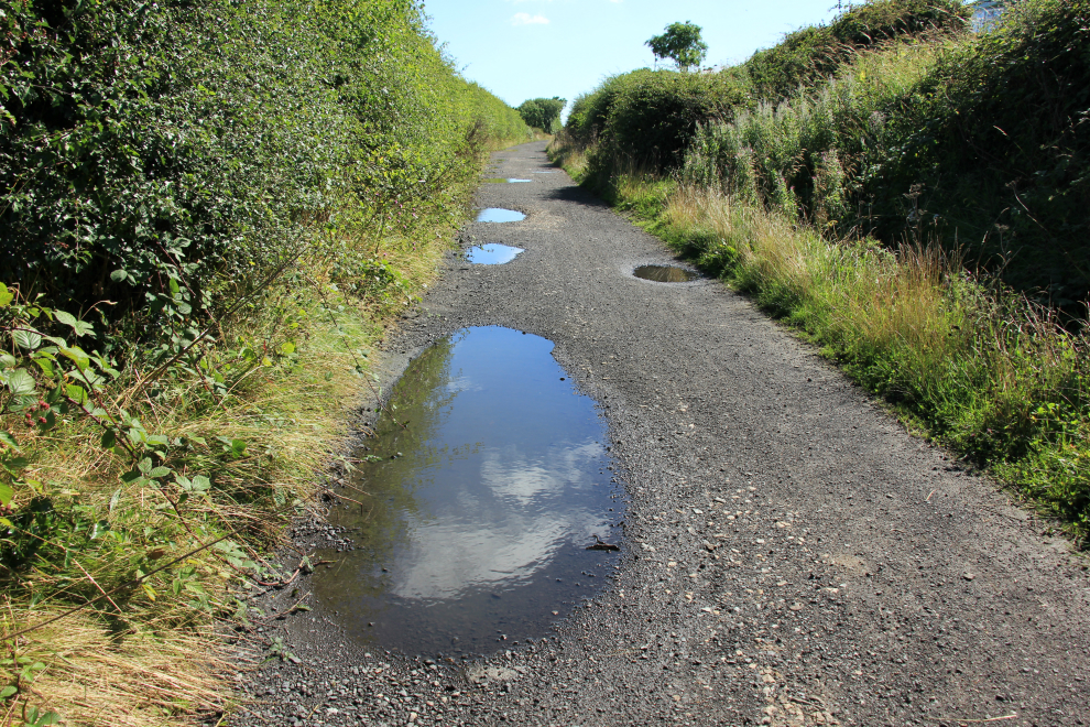 Puddles on the Cinder Track