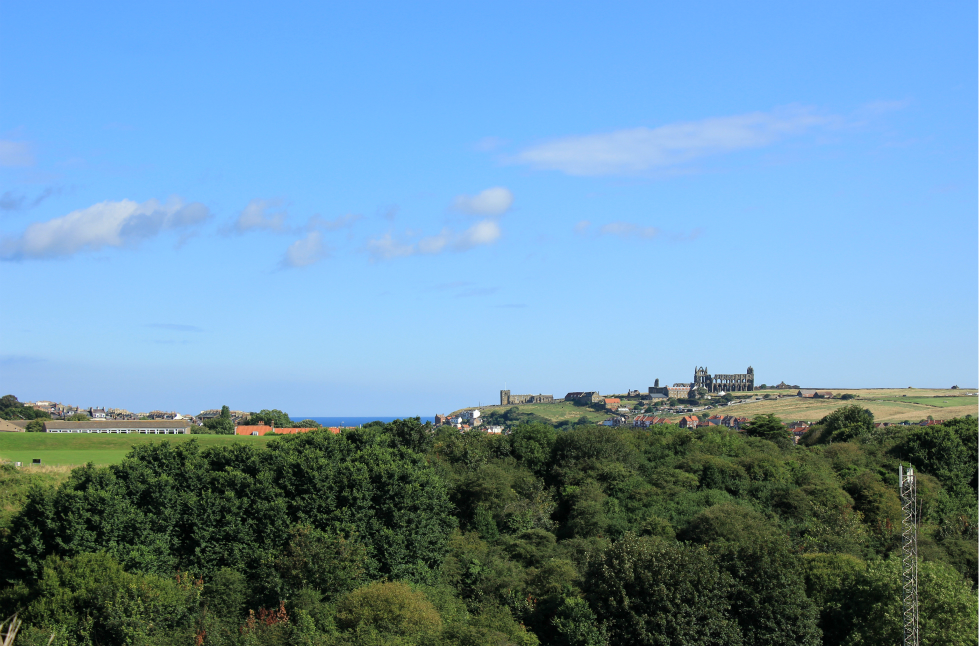 View of Whitby Abbey from Larpool Viaduct
