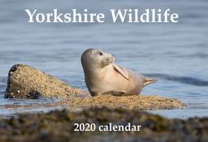 Yorkshire Wildlife Calendar 2020