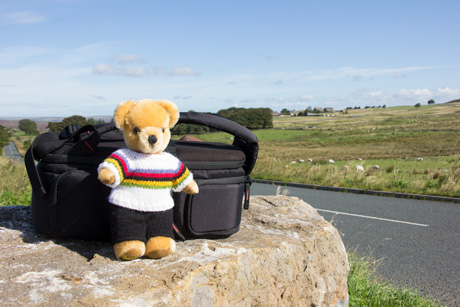 World Champion bear at Greenhow Hill