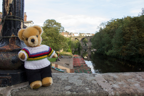 World Champion bear at Knaresborough