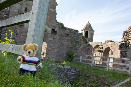 World Champion bear at Spofforth Castle