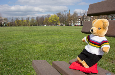 World Champion bear on West Park Stray, Harrogate