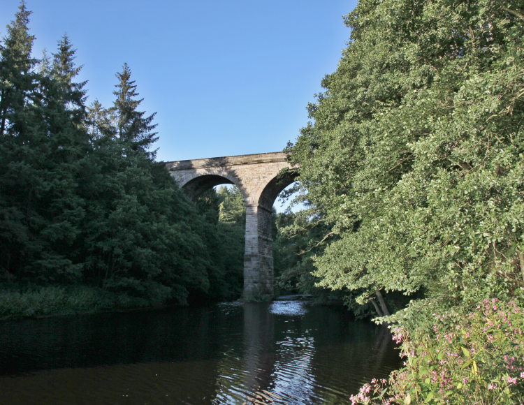 Nidd viaduct