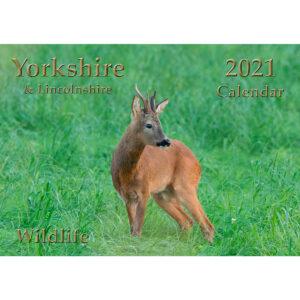 Yorkshire Wildlife Calendar 2021
